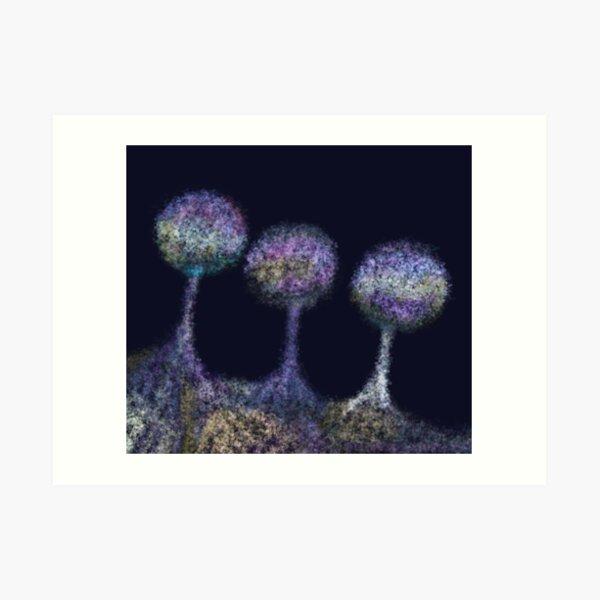 Lamproderma echinulatum - bobble heads Art Print