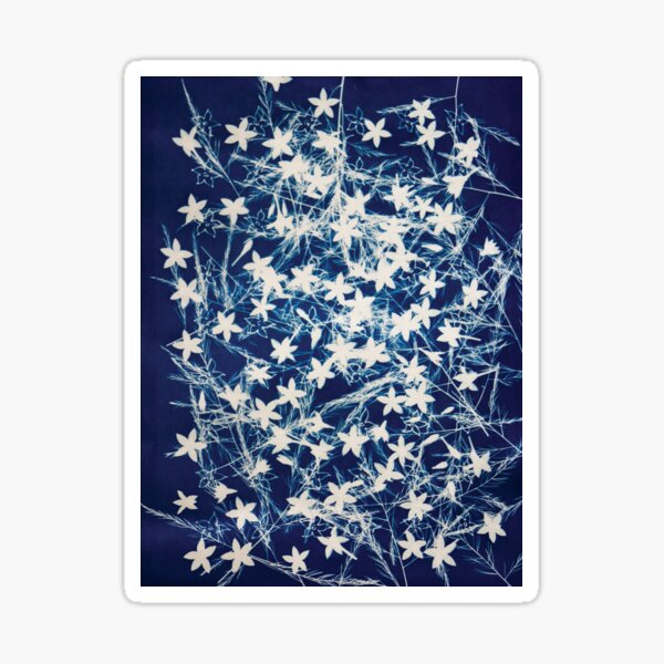 Delicate Penta Flowers and Fern Sprigs in Blue and White Cyanotype. Sticker