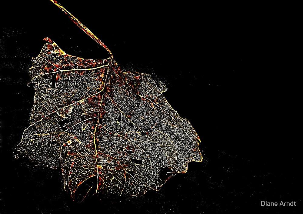 Vein System by Diane Arndt