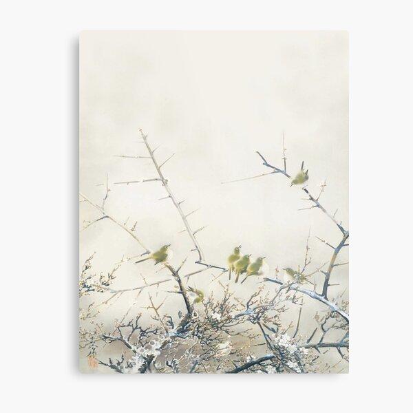 Vintage Japanese Art 6,  Japanese White-Eye and Plum Blossoms Metal Print