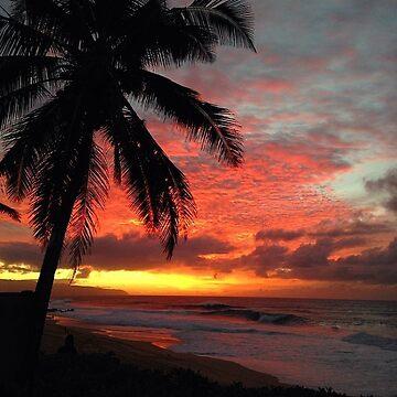 My Bahamasa by sanny12