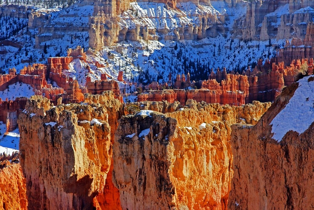 Bryce Canyon by Harry Oldmeadow