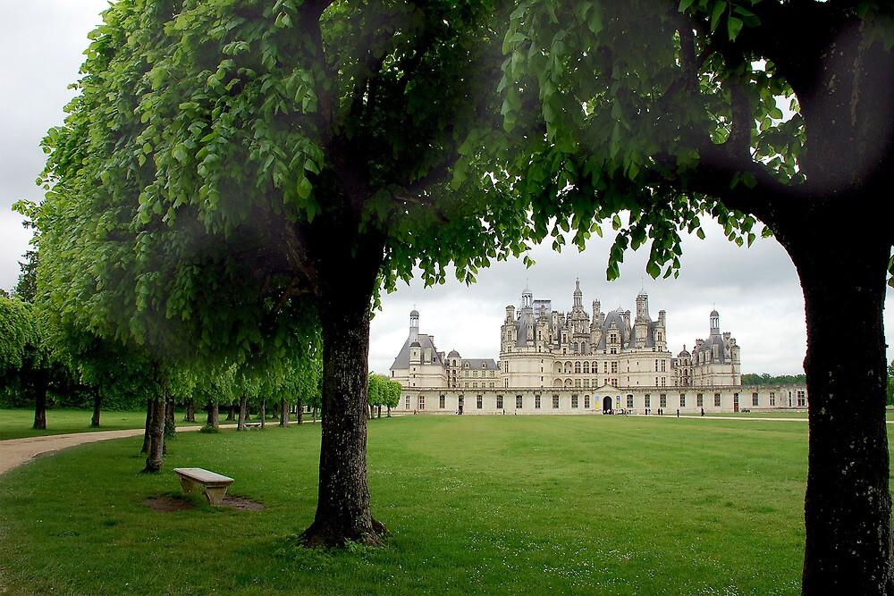 Chambord - France by Arie Koene