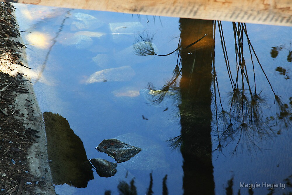 Sky reflections by Maggie Hegarty
