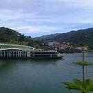 Port vineyard travellers by Machado Rodrigues