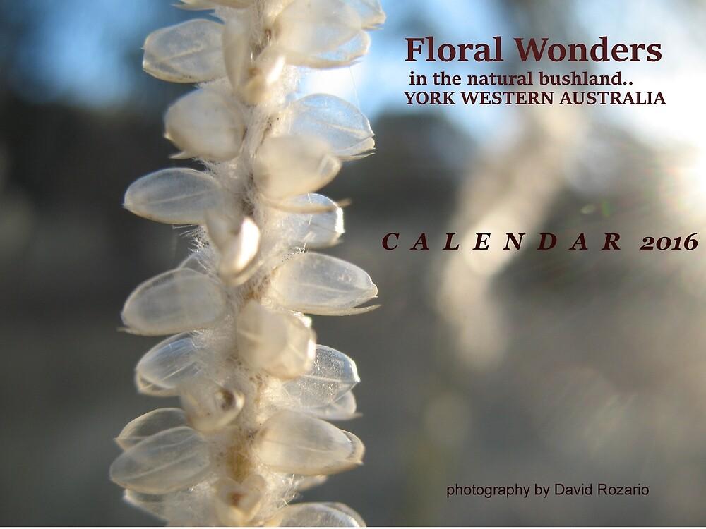 I still belong Calendar Cover by David Rozario