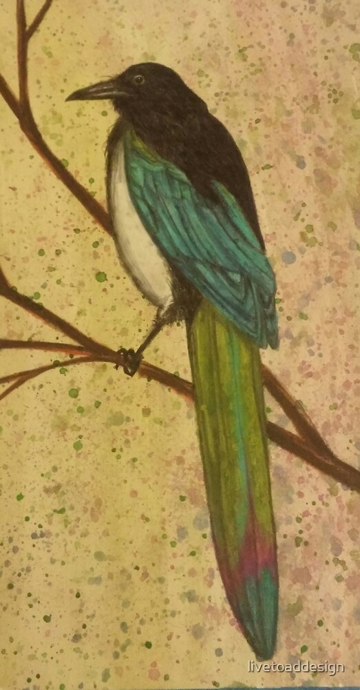 painted magpie by livetoaddesign