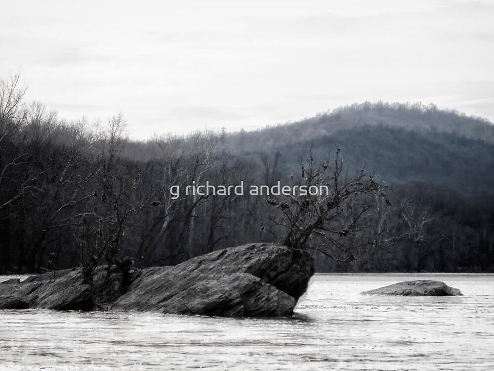 Blue Shenandoah by g richard anderson