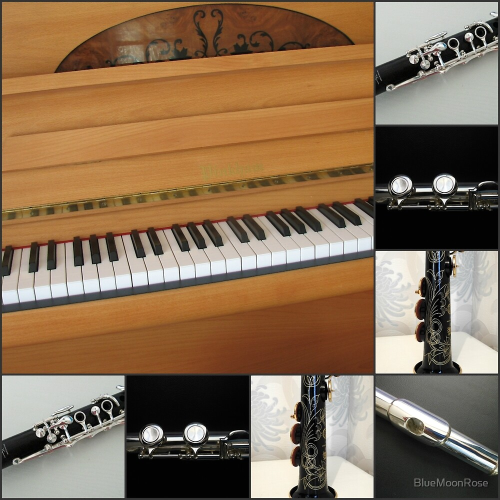Piano and Woodwind Collage by BlueMoonRose