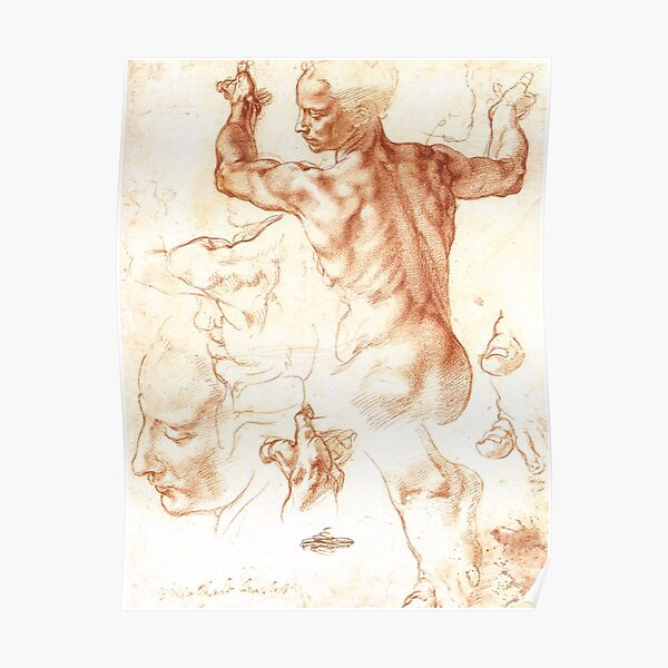 Michelangelo. Studies for The Libyan Sibyl. Poster