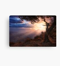 Yaki Point Canvas Print