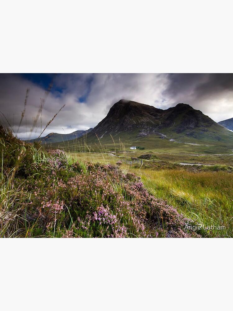 Scotland- Heather,wind and mountains by AngelaBarnett