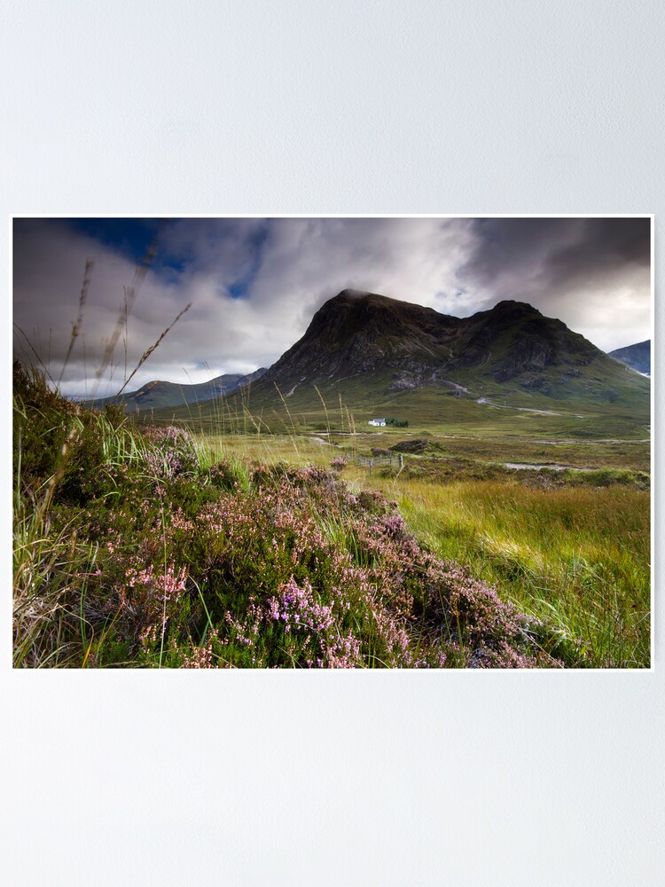 Alternate view of Scotland- Heather,wind and mountains Poster