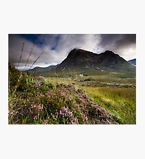 Scotland- Heather,wind and mountains Photographic Print