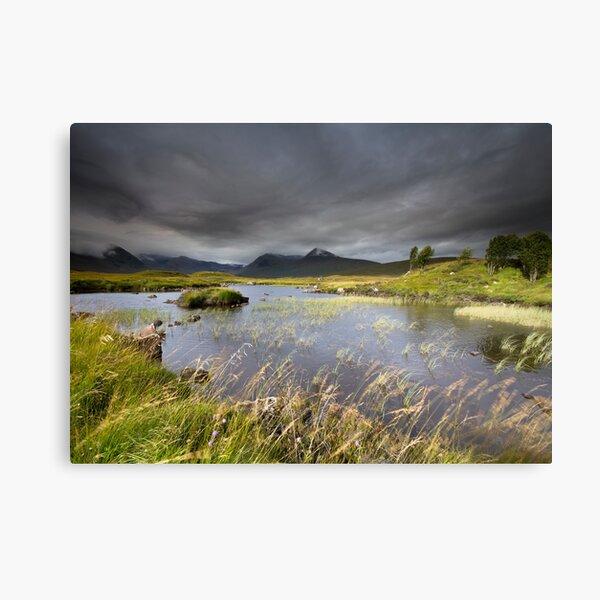 Scotland- Light & Wind Canvas Print
