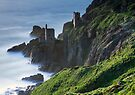 Cornwall - Old Tin Mines 1 by Angie Latham