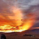 Palomino Valley Nevada Sunset by SB  Sullivan