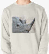 Will You Be My Friend? Pullover