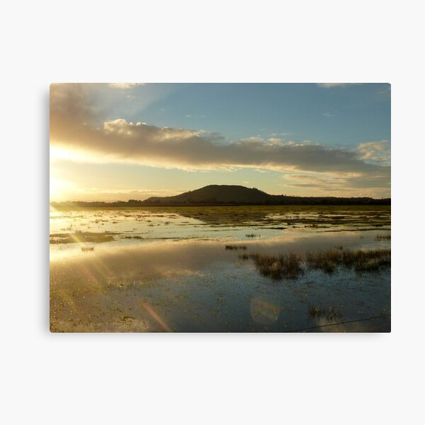 Flooding in Somerset Canvas Print