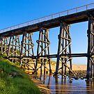 Derelict rail line, Kilkunda, Gippsland, Victoria. by johnrf