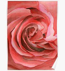 Watercolor Rose Poster
