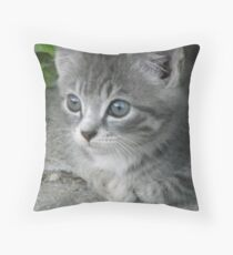 Wiskers Throw Pillow