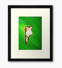Lost Continent  Framed Print