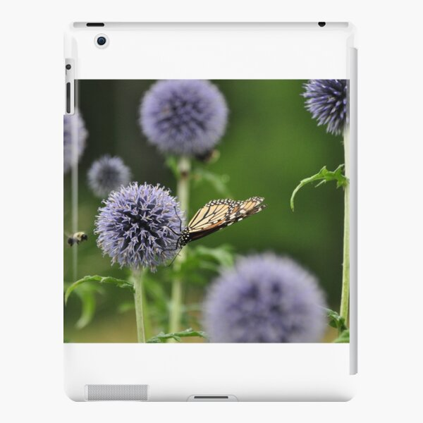 Monarch & the Bee iPad Snap Case
