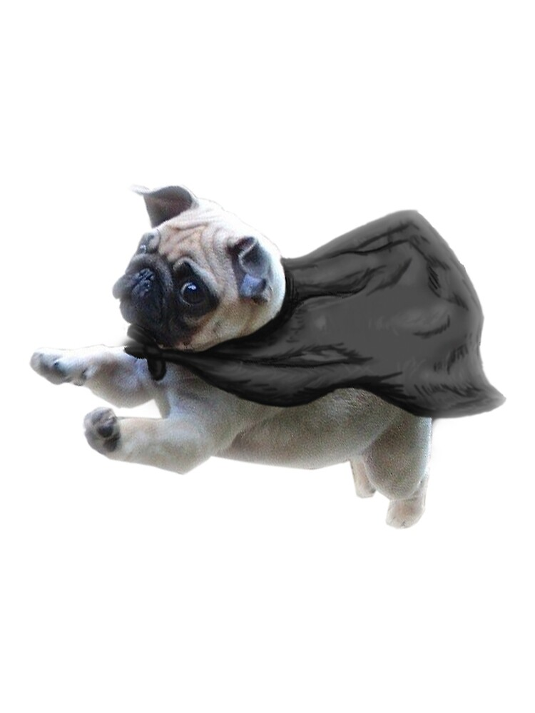 Pug Shirt and Hoodie by Syre
