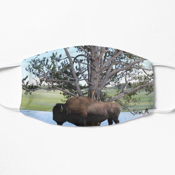 Bison Tree Flat Mask