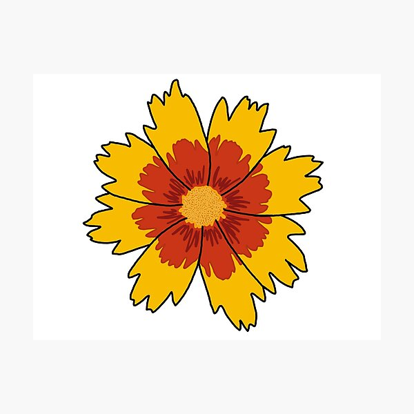 Yellow and Red Flower Photographic Print