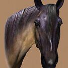 Horse Portrait  by Walter Colvin
