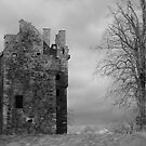 Historic Tower Gordon Berwickshire by blod