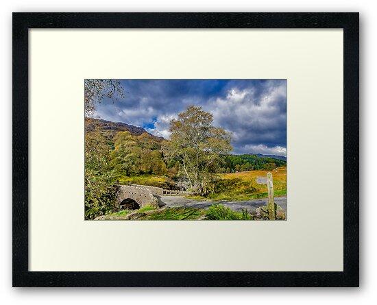 Birks Bridge Duddon Valley by Trevor Kersley