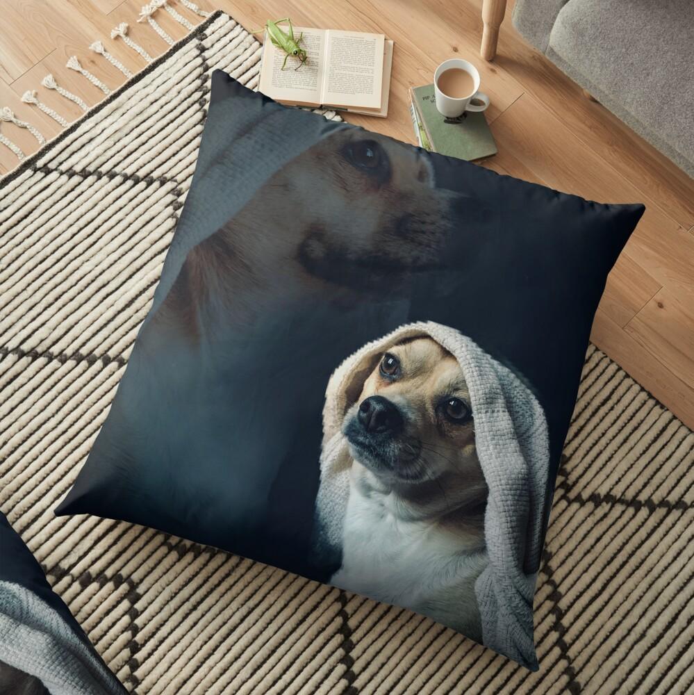 Olan Floor Pillow