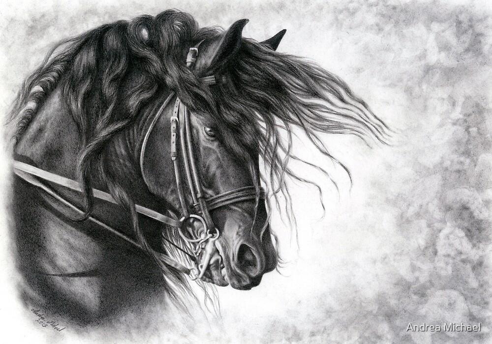 Django of Cacharel - Friesian Grand Prix Dressage Horse by Andrea Michael