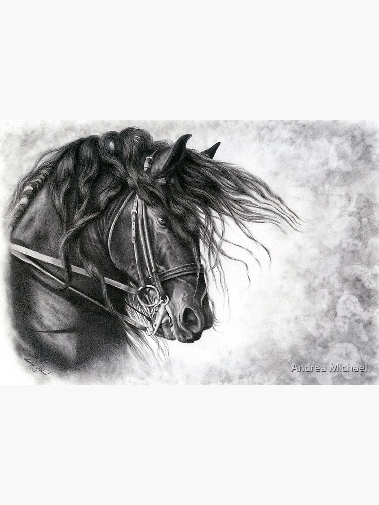 White Andalusian Black Friesian Pack of 6 Horse Christmas Cards Grey
