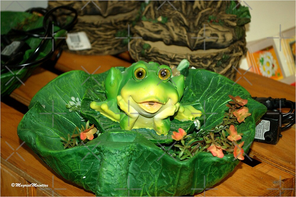 HELLO THERE ! - MY LOCAL NURSERY - UIT MY PLAASLIKE KWEKERY by Magriet Meintjes