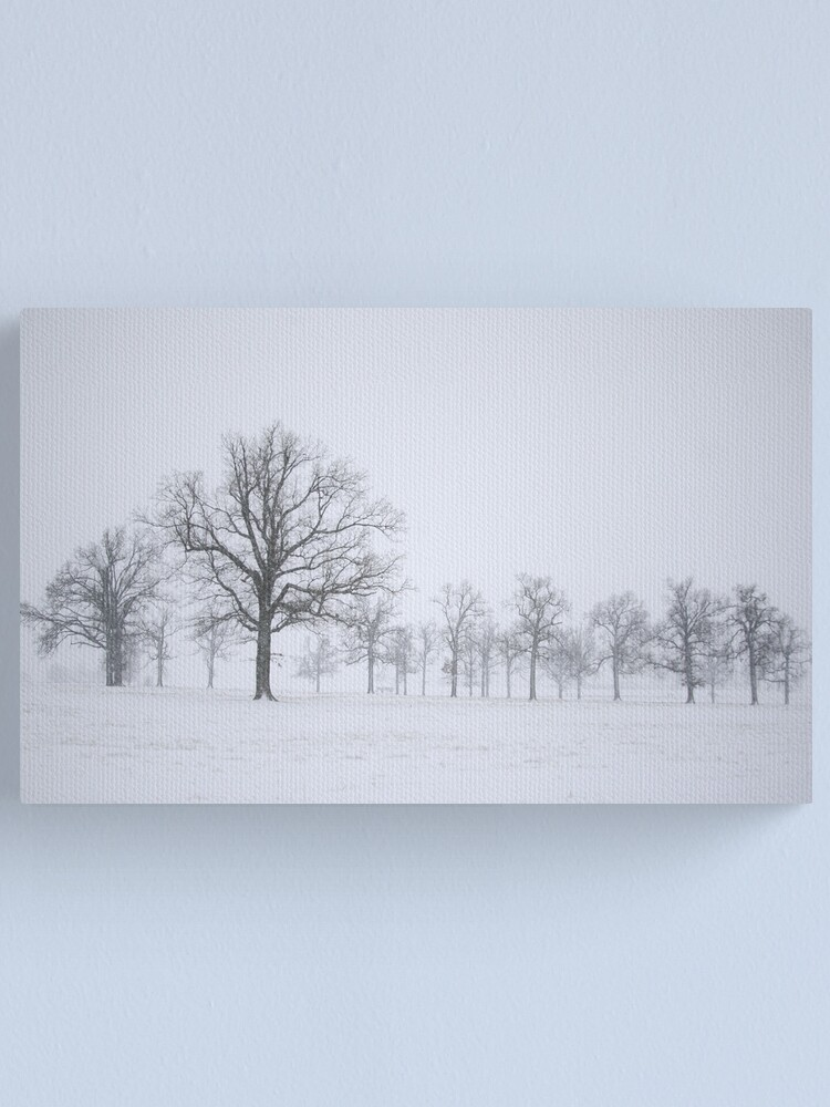 Alternate view of Sentinels Canvas Print