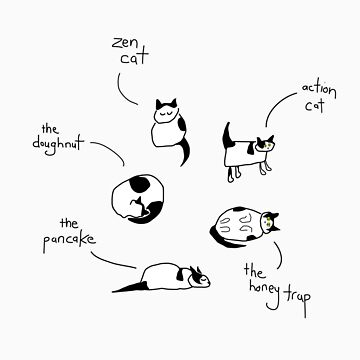 Cat of many postures by picklejarnz