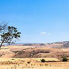 Hamilton - Tasmania - Australia by Anthony Davey