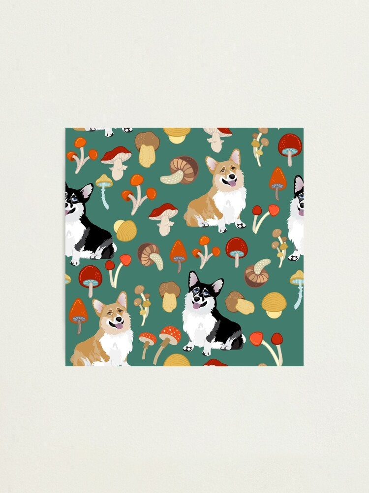 Alternate view of Corgis In Mushroom Fall Forest - Teal Photographic Print