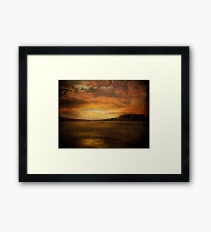 Winter Wetlands Framed Print