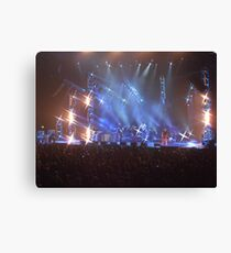 Cold chisel Canvas Print