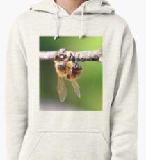Closer Pullover Hoodie