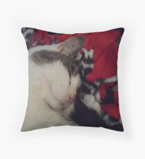 Snuggle Kitty Throw Pillow