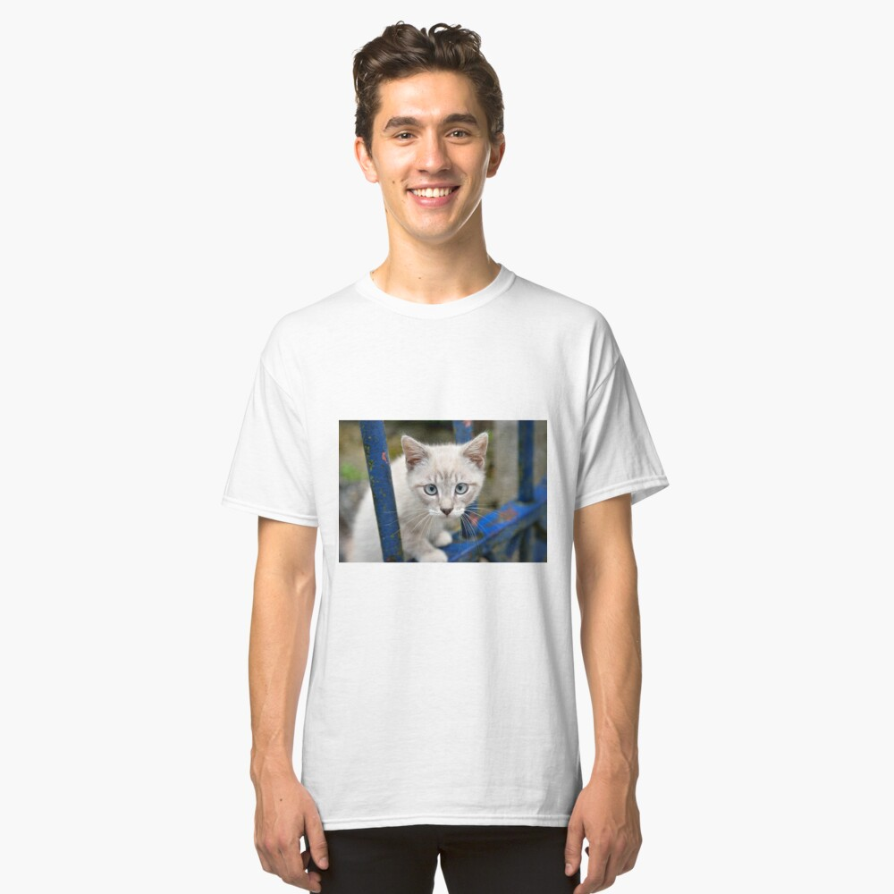 Kitten with blue eyes on the street Classic T-Shirt Front
