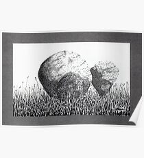 Boulders in the Grass Poster