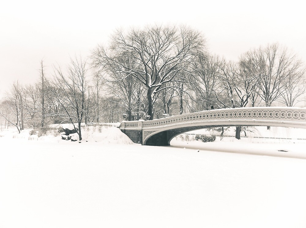 Bow Bridge After Snowfall, Central Park, New York City by Vivienne Gucwa