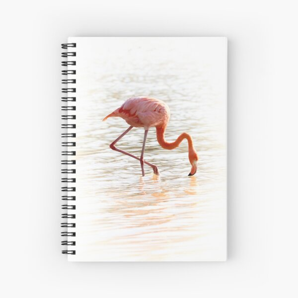 Pink Flamingo Feeding Spiral Notebook